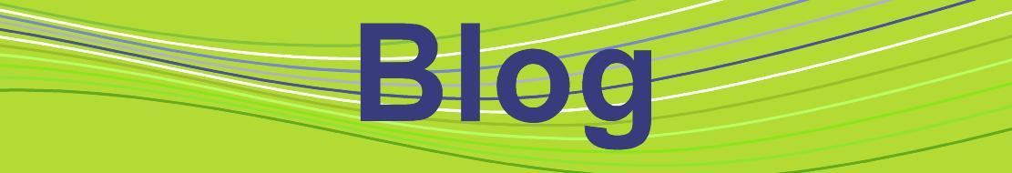 IES Zubiri-Manteo BHI. Blog